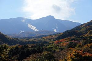 箱根ガラスの森 紅葉状況 2010年11月4日撮影