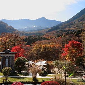 大涌谷と紅葉の山々