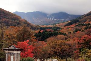 紅葉の庭園と大涌谷