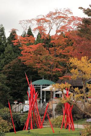 箱根ガラスの森 紅葉状況 2009年11月4日撮影