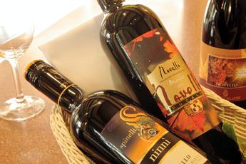 イタリア・ワイン新酒Novello(ノヴェッロ)