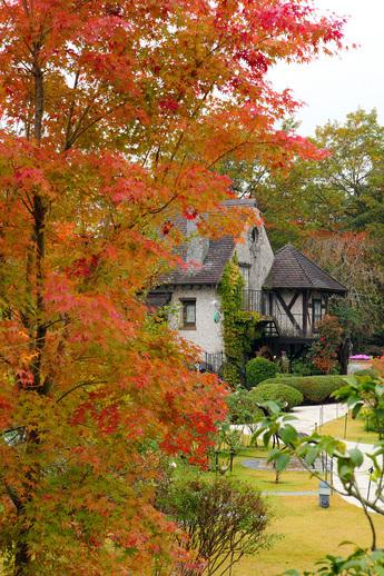 箱根ガラスの森美術館の庭園の木々も紅葉