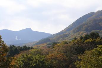 20131031-箱根ガラスの森美術館−紅葉 (22).JPG