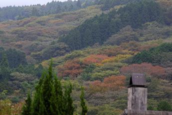 台ヶ岳の紅葉