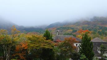 2013年11月7日 箱根ガラスの森美術館 紅葉記録