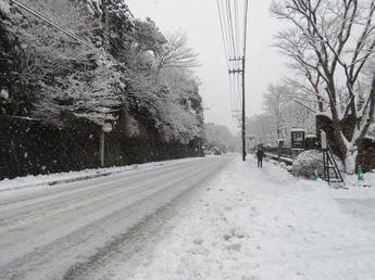 2015-01-30_sx60_7.JPG