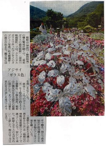読売新聞:クリスタル・ガラスのアジサイ