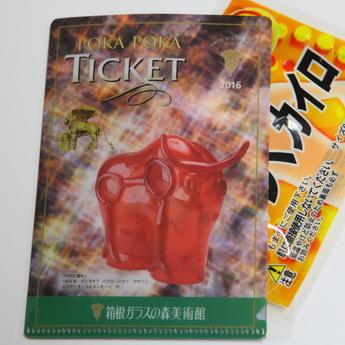12月限定入館チケット ポカポカチケット