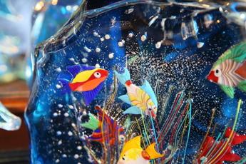 ガラスの水族館