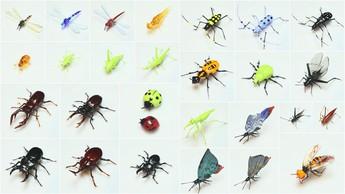 ガラスの昆虫