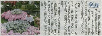 東京新聞:クリスタル・ガラスのアジサイ