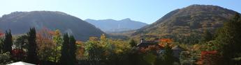 2012年11月8日撮影 箱根ガラスの森美術館 紅葉状況