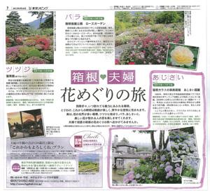 東京リビング:あじさい庭園
