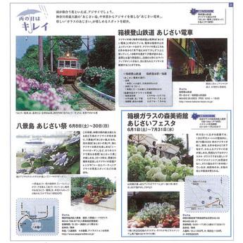 神奈川新聞「ららかながわ」:クリスタル・ガラスのアジサイ
